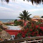 Foto de Sea Dreams Hotel