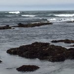 Tidal pools emerging as the tide goes out