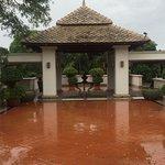 welcoming Rains