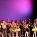 Annual recital and community performance opportunities!
