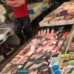 All sorts of fish and shellfish.