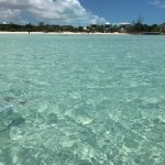 Billede af Taylor Bay Beach
