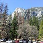 Yosemite National Park 11