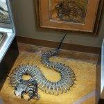 Interesting art in the exhibit hall