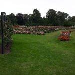 Photo of Westbroekpark