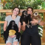 These baby monkeys were the sweetest!