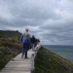 The path between the Cape of Good Hope and Cape Point