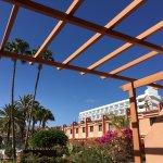 Foto de Apartamentos Jardín del Sol