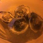 Shugoku oysters