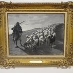 Ttiled Navajo Sheep Herder ,1888