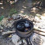 breadfruit in tire rim