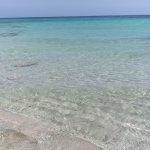 Photo de Insotel Hotel Formentera Playa
