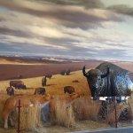 Northern Arapaho museum