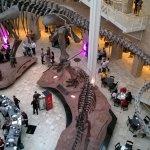 Photo de Fernbank Museum of Natural History