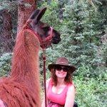 Foto de Wild Earth Llama Adventures