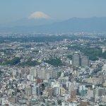 View across part of Yokohama to Mt Fuji