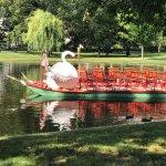 Boston Public Garden Foto