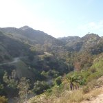 Photo de Runyon Canyon Park