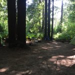Foto de KOA Campground Crescent City