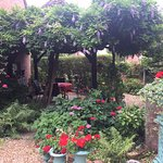 Garden of the B&B