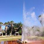 Old Faithful Geyser of California erupting