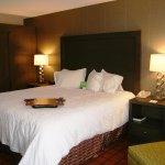 Beautiful 1 King Bed Guestroom