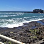 outdoor view from the Whale Watching Center - Depot Bay, Oregon