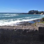 another terrific view at the Whale Watching Center - Depot Bay, Oregon