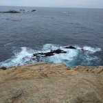 Point Lobos State Reserve Foto