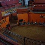 Kalari - sporting stage