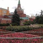 Alexander Garden (6)