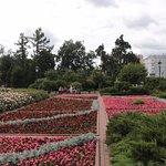 Alexander Garden (7)