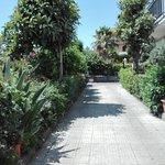 Photo of Pensione Villa Sant'Antonio