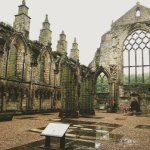 the abbey ruin in a light drizzle - just magical!