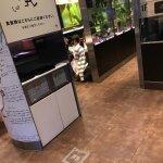 マクドナルド 六本木ヒルズ店の写真