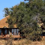 Photo of Rhulani Safari Lodge