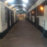 Our livery stables