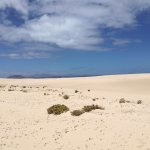 Photo of Corralejo Dunes