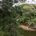 Love the variety of ziplines at Gumbalimba Park