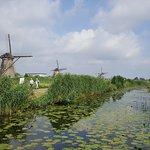 Foto de Red de molinos de Kinderdijk-Elshout
