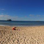 Photo of Seacliff Beach
