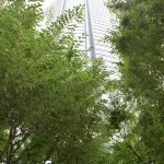 Photo of Roppongi Hills, Shop & Restaurant Area