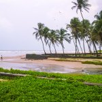 stream which flows parallel to beach and enter the sea with coconut trees in background