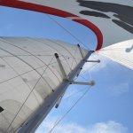Photo de Nauti-Cat Cruises