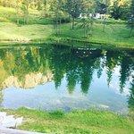 Photo of Ristorante Lago Scin