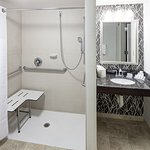 Handicap Accessible Bath Room - King Standard