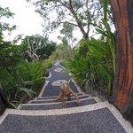 Balangan Garden Bungalow Foto