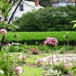 Foto di Vintage Gardens Bed & Breakfast
