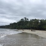 Foto de Cahuita National Park