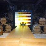 Inside Camus